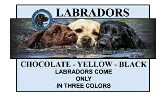 LRC Lab Colors